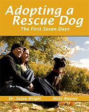 adopting_a_rescue_dog.jpg