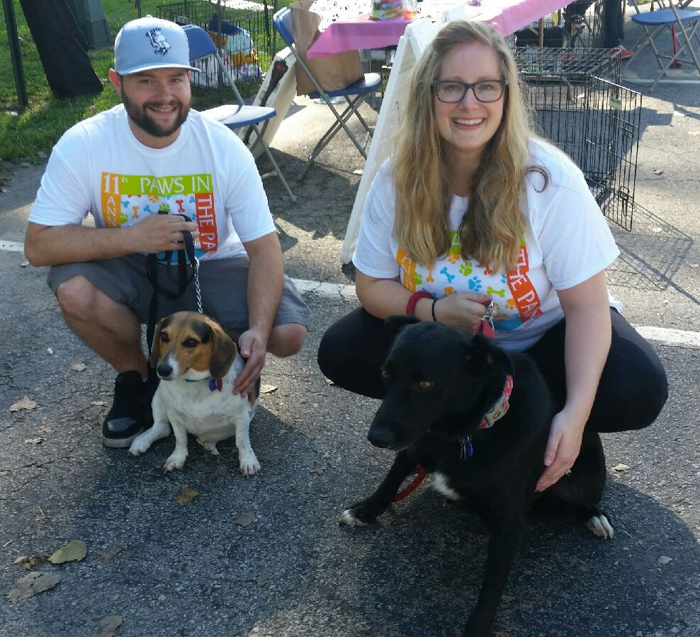 Two of FOPAS adoptable dogs at the event