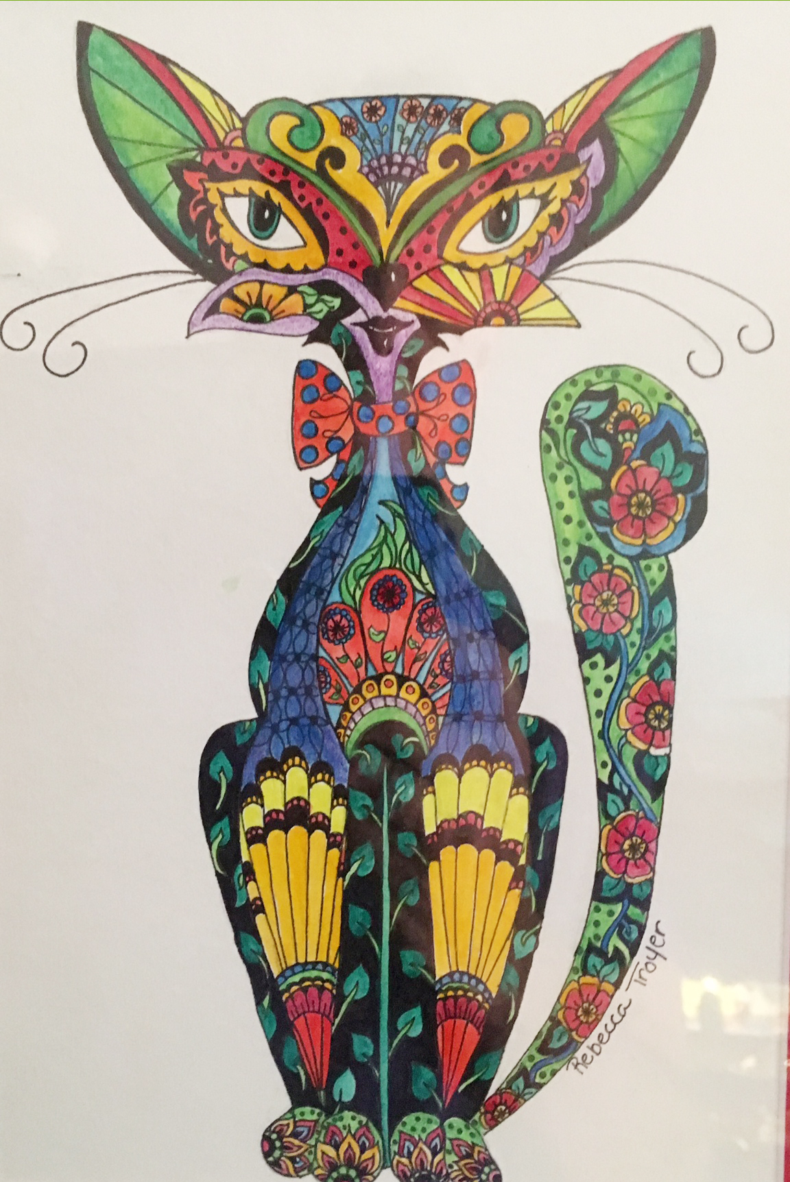 color cat.jpg