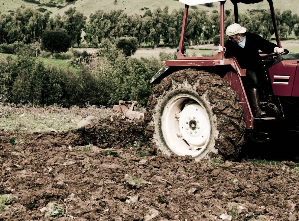 plowing - osmar01 {sxc.hu, 2011]