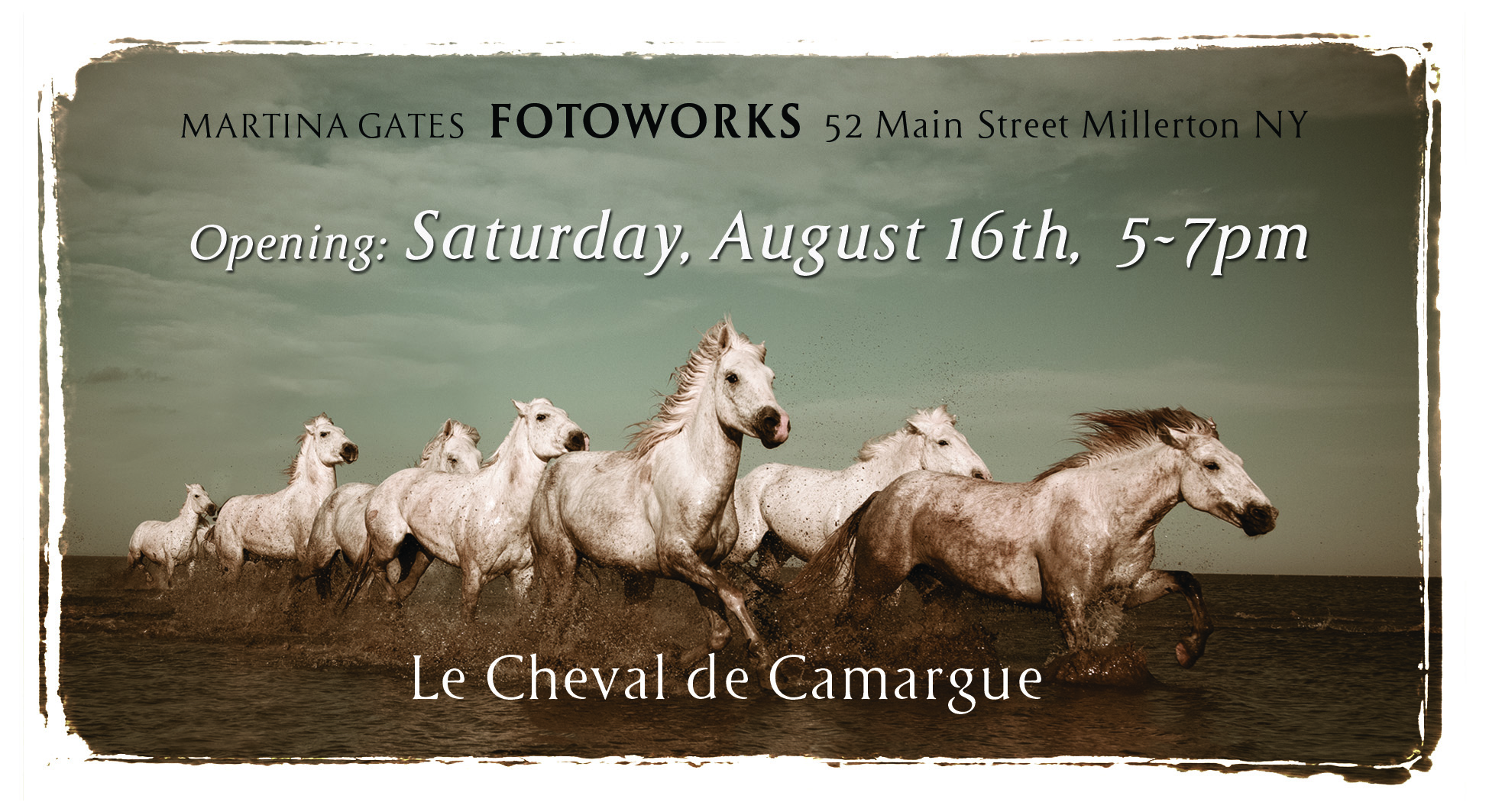 The first show is a collection of images of the horses of the Camargue. All images are printed as a limited edition of 5 and are hand signed and numbered. Each image comes with a certificate of authenticity.