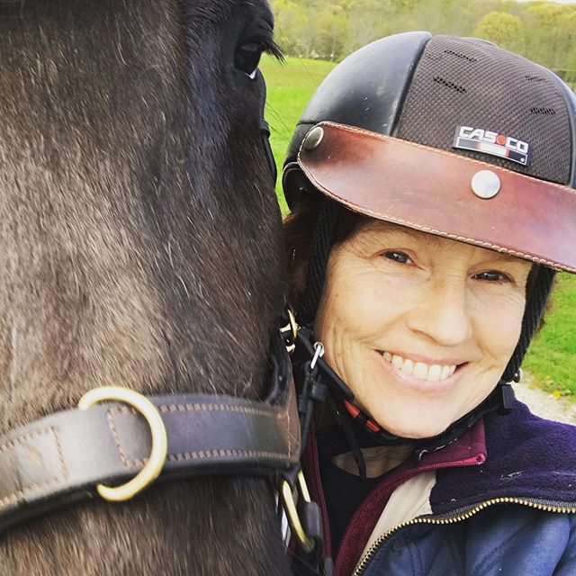 Taking my 'joystick' out for a ride in the park ❤️ #joystick #horsesoficeland #kolturseyhorses #krækja #martinagatesfotoworks