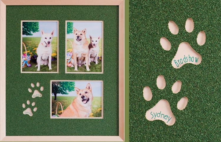 Playful dog memories