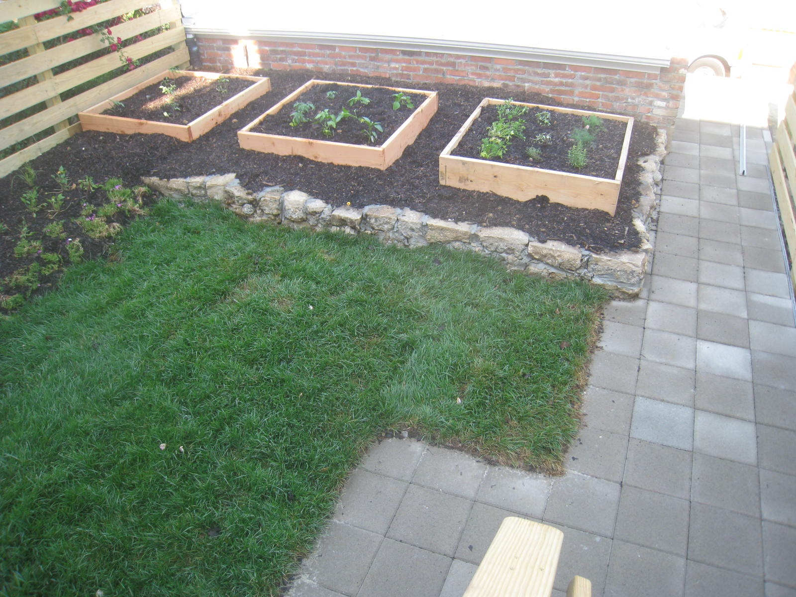 Vegetable garden boxes complete with great soil...
