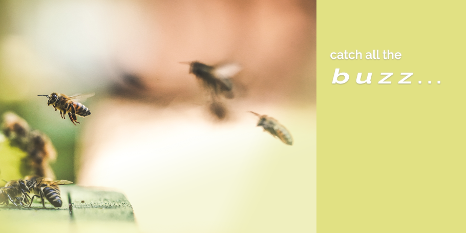 Catch all the buzz about our spring doings at Portland Healing Space
