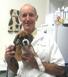 Dr. Netschert with a patient