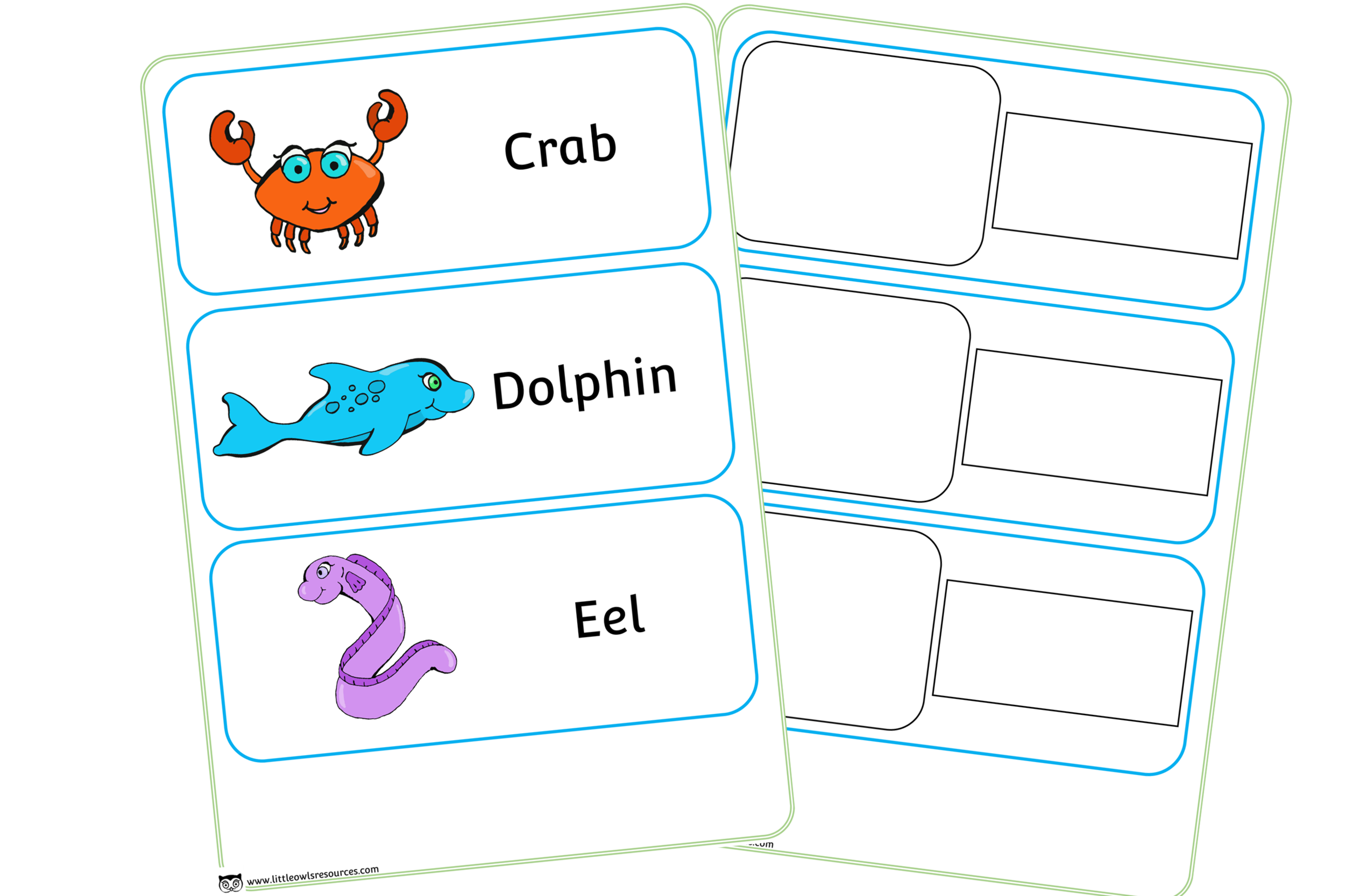 Sea Animal Word Cards
