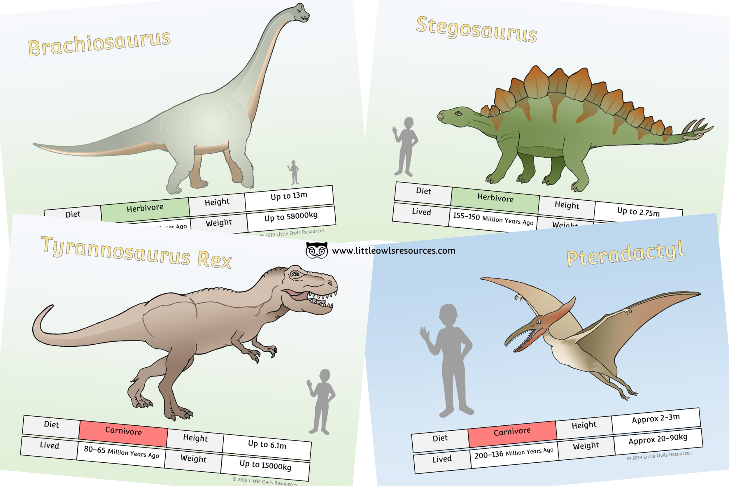 picture relating to Printable Dinosaur named Absolutely free Dinosaur Truth of the matter Posters printable Early Yrs/EY (EYFS