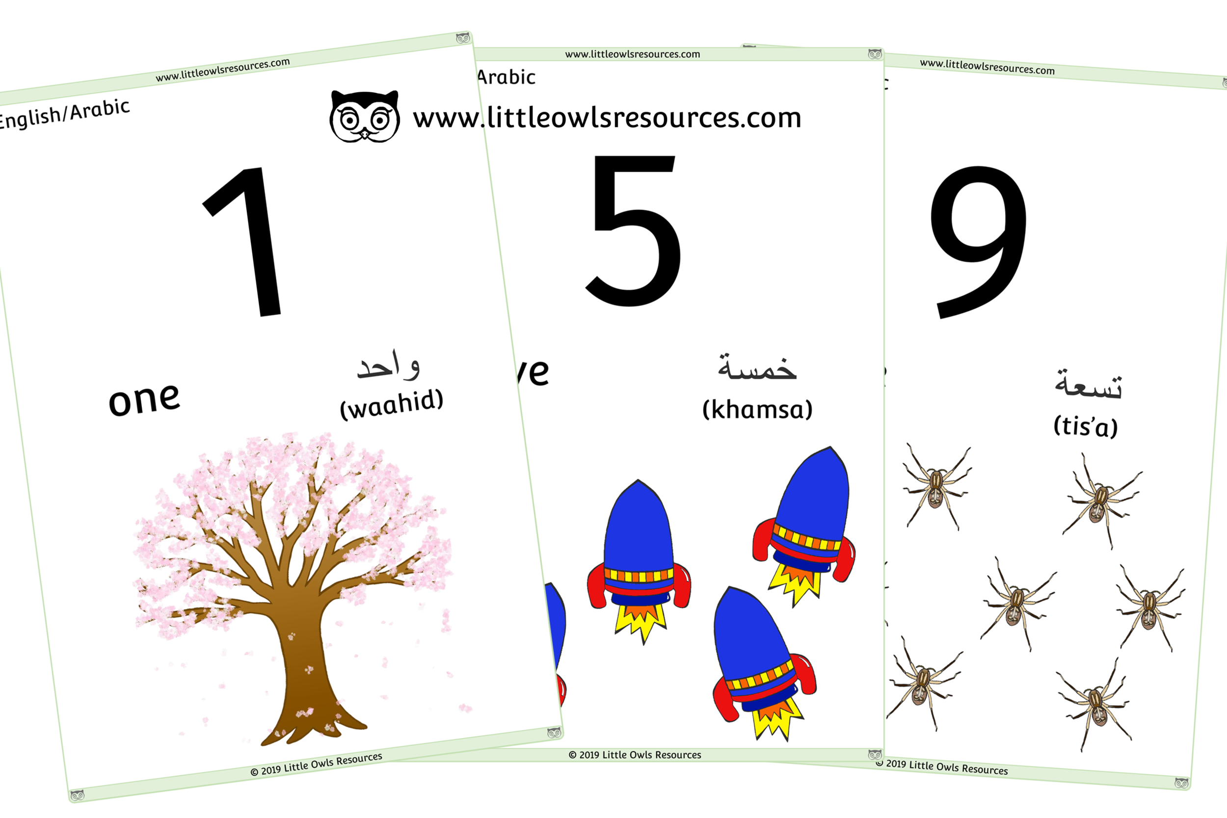 0-10 Counting Arabic/English - Arabic/English Dual Language Numbers and Counting Posters/Display/Flashcards