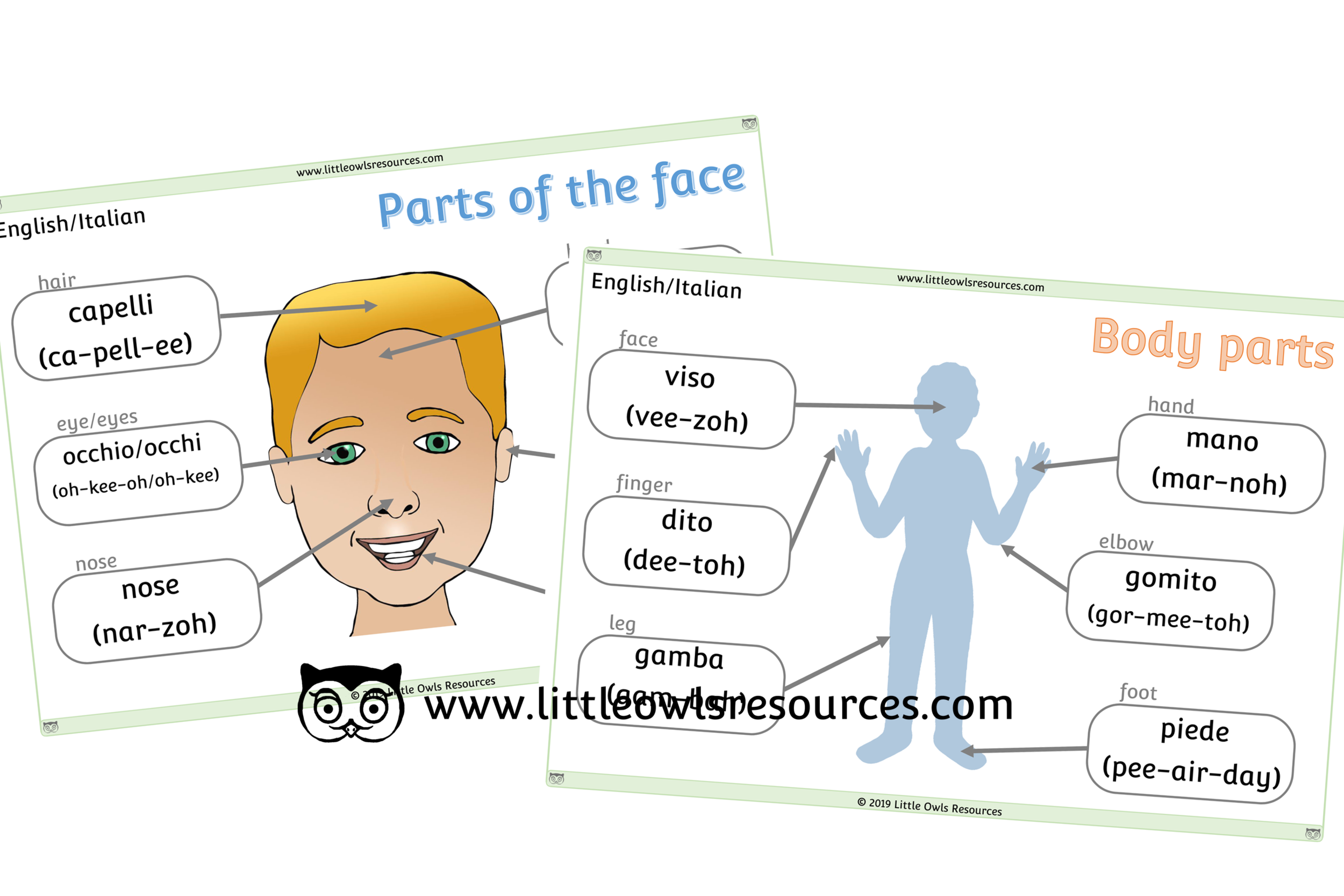 Face & Body Parts Italian/English - Italian/English Dual Language Face & Body Part Posters/Display