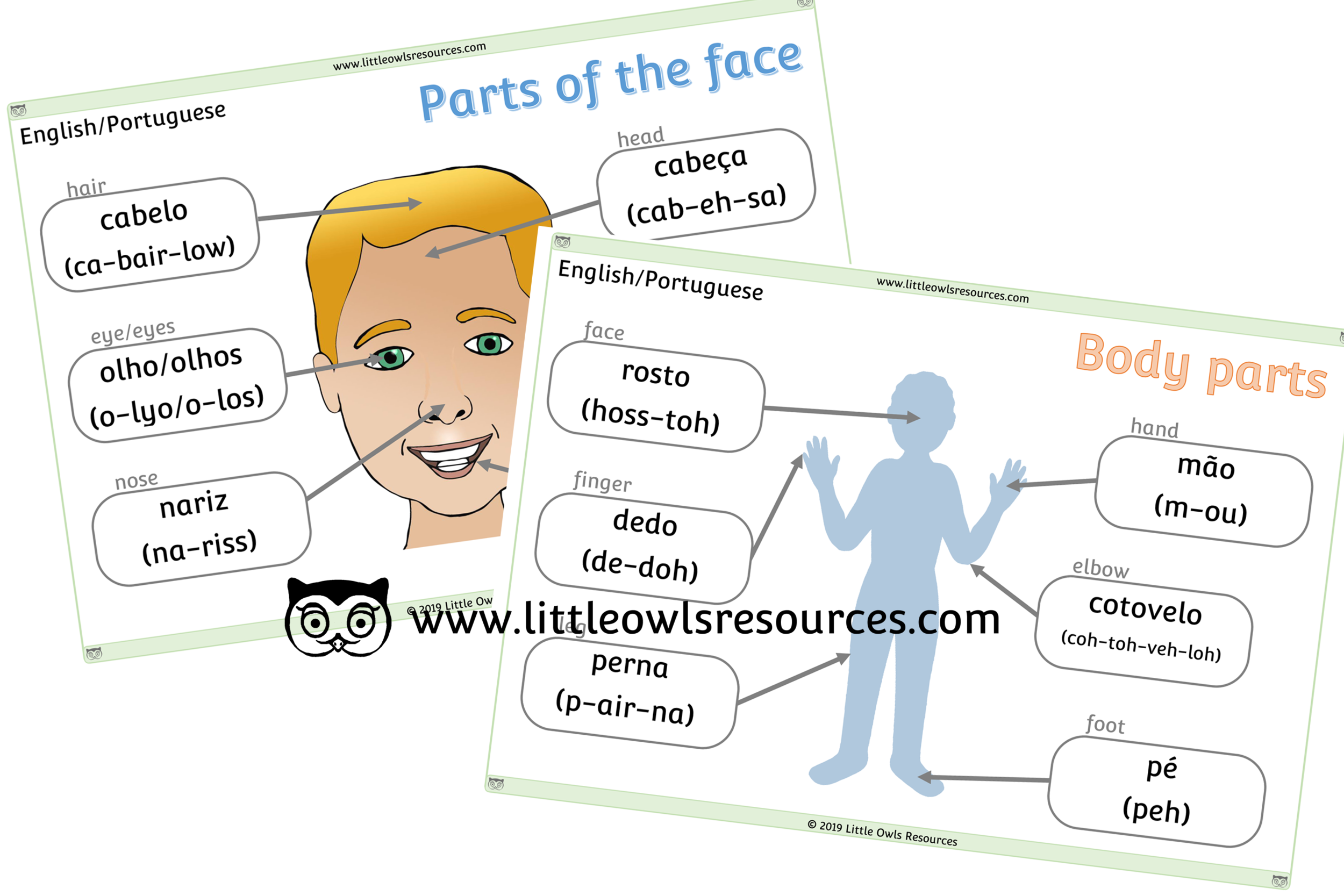 Face & Body Parts Portuguese /English - Portuguese/English Dual Language Face & Body Part Posters/Display