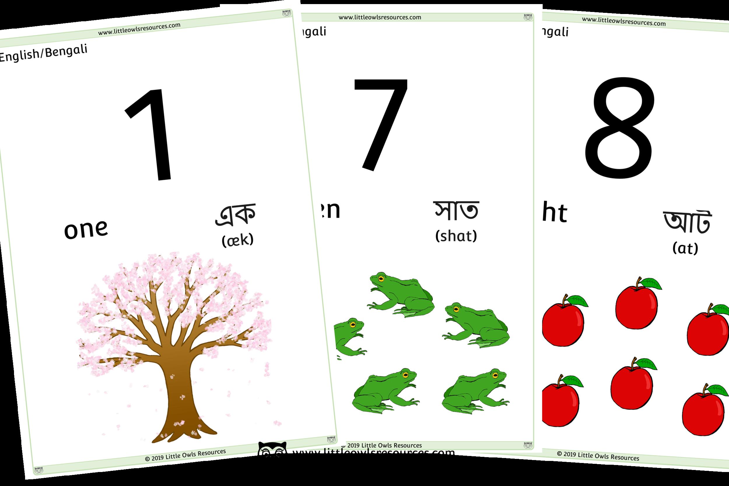 0-10 Counting Bengali/English - Bengali/English Dual Language Numbers and Counting Posters/Display/Flashcards