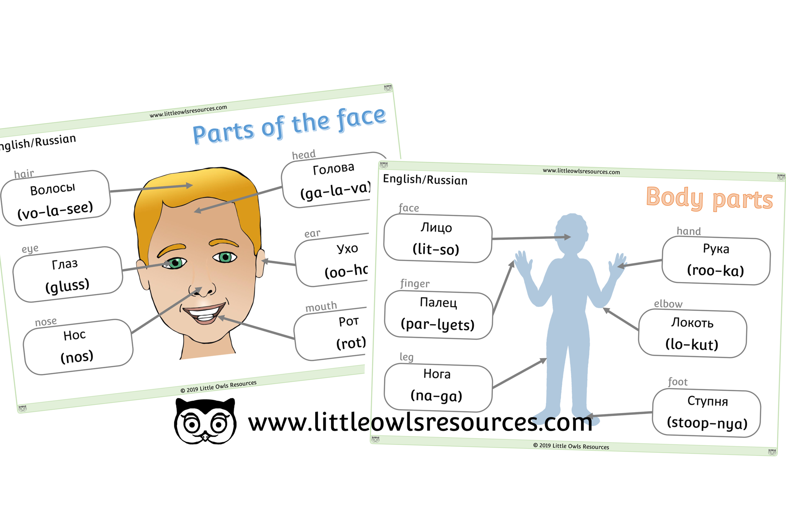 Face & Body Parts Russian/English - Russian/English Dual Language Face & Body Part Posters/Display