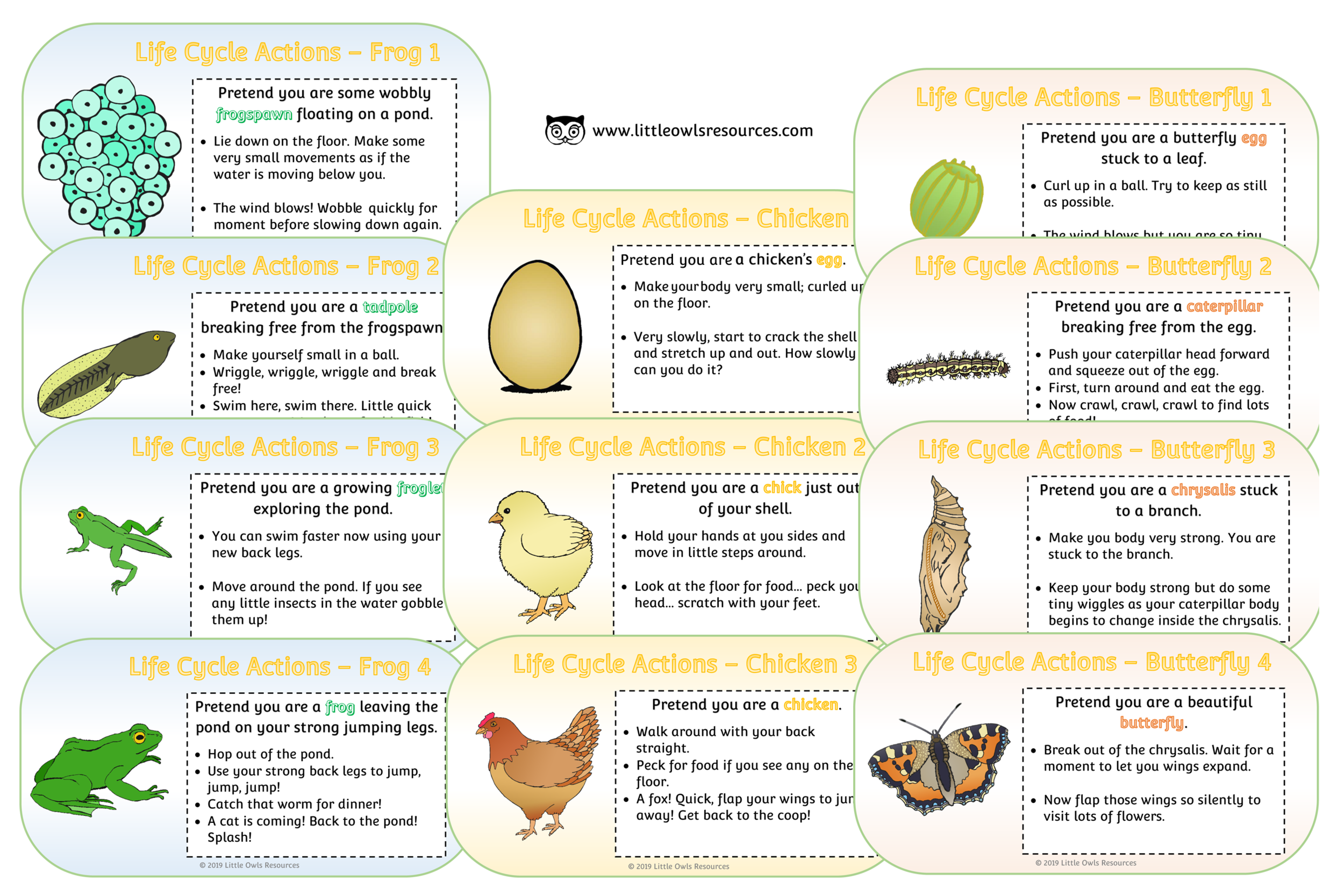 LIFE CYCLE ACTION CARDS
