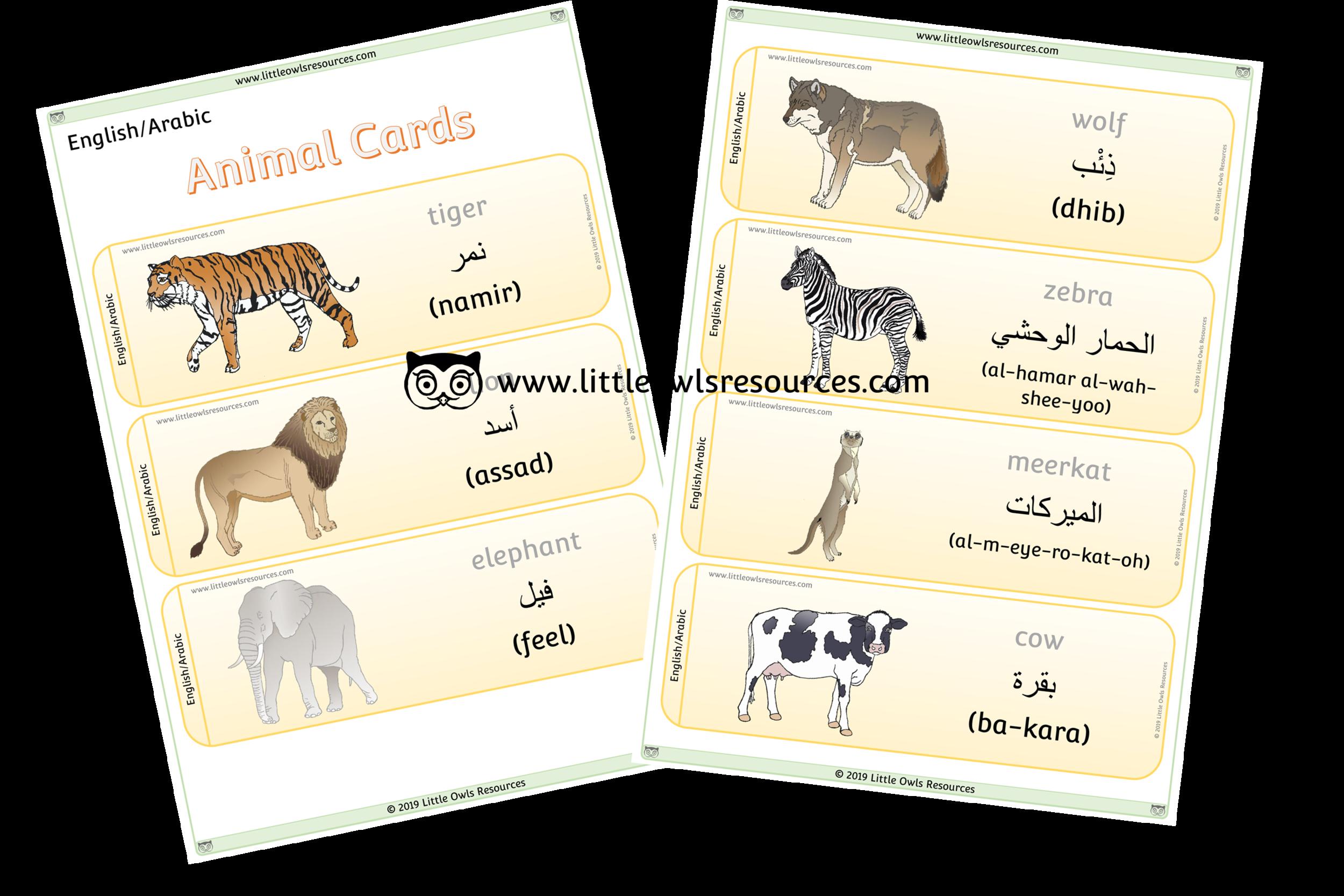 Animals Arabic/English - Arabic/English Dual Language Animal Cards/Posters/Display