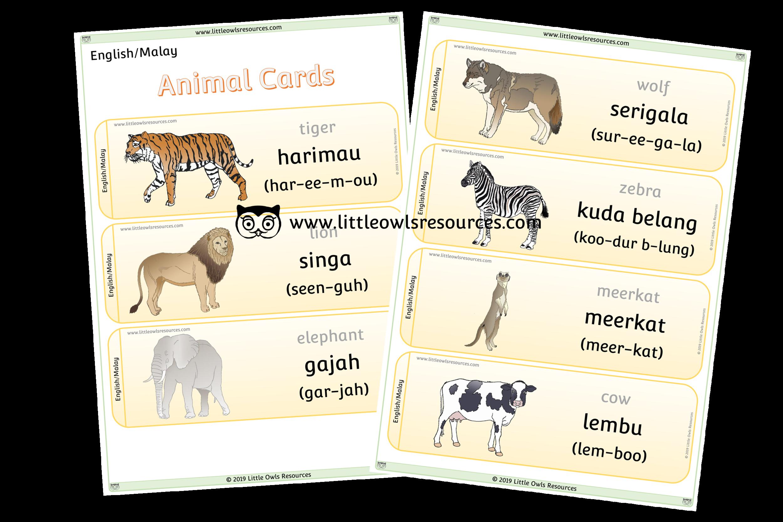 Animals Malay/English - Malay/English Dual Language Animal Cards/Posters/Display