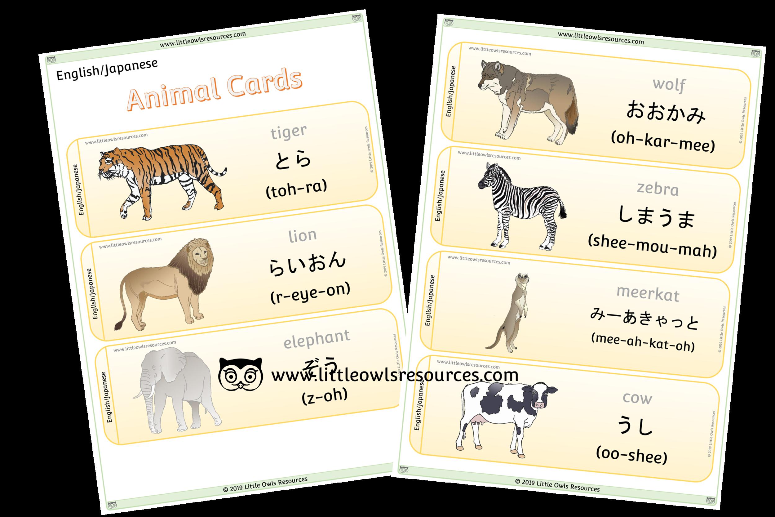 Animals Japanese/English - Japanese/English Dual Language Animal Cards/Posters/Display