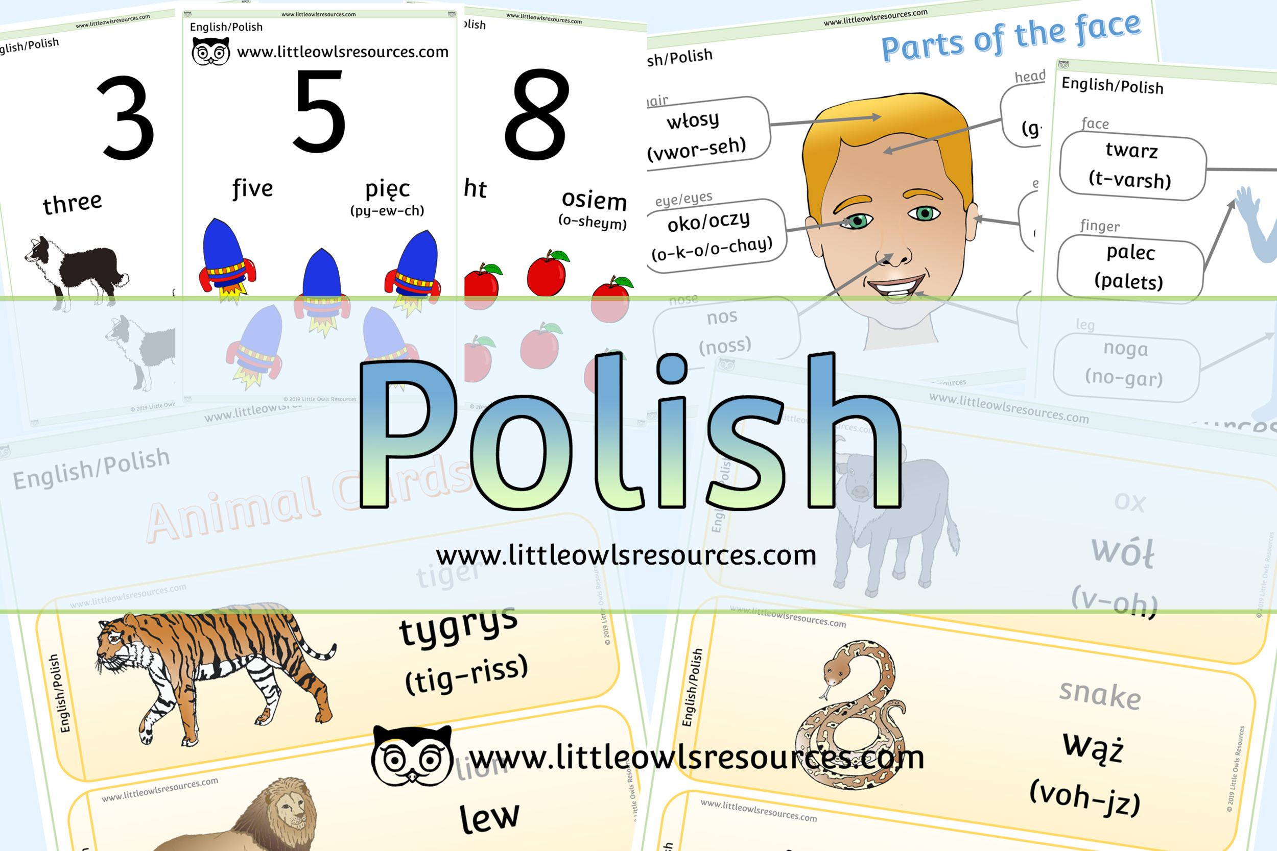 Polish/English Dual Language Resources
