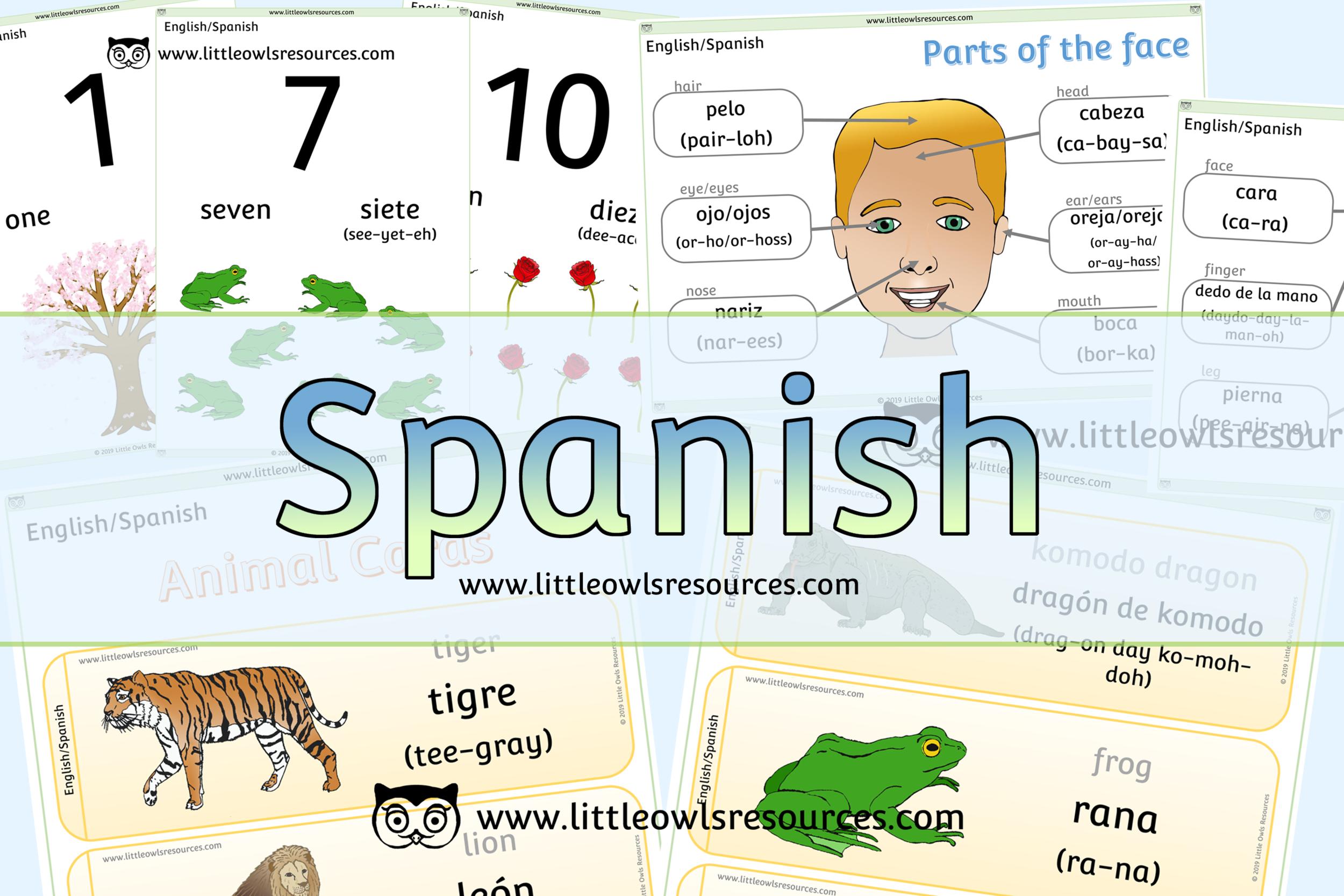 FREE Spanish/English Dual Language printable Early Years/EYFS ...