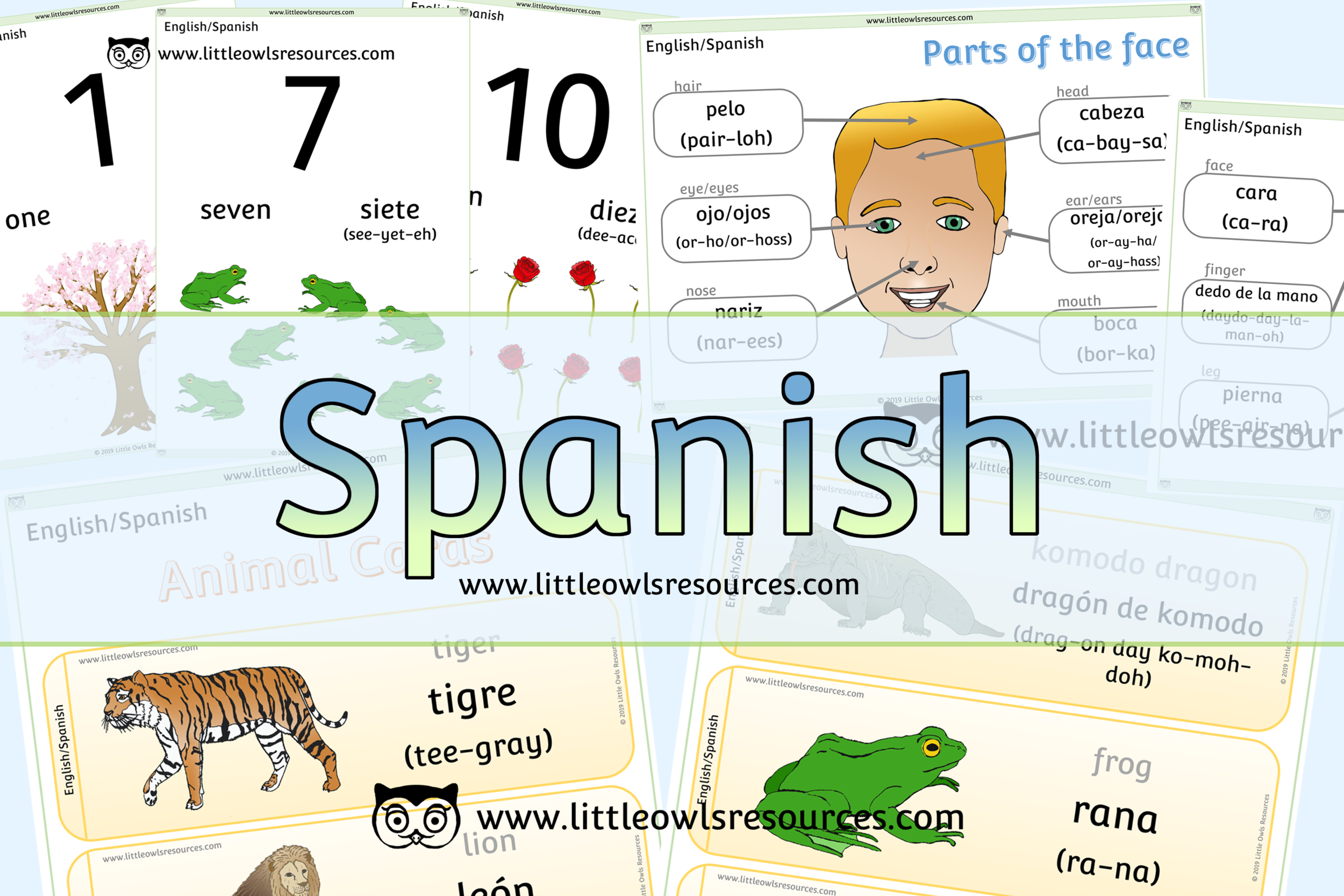 Spanish/English Dual Language Resources