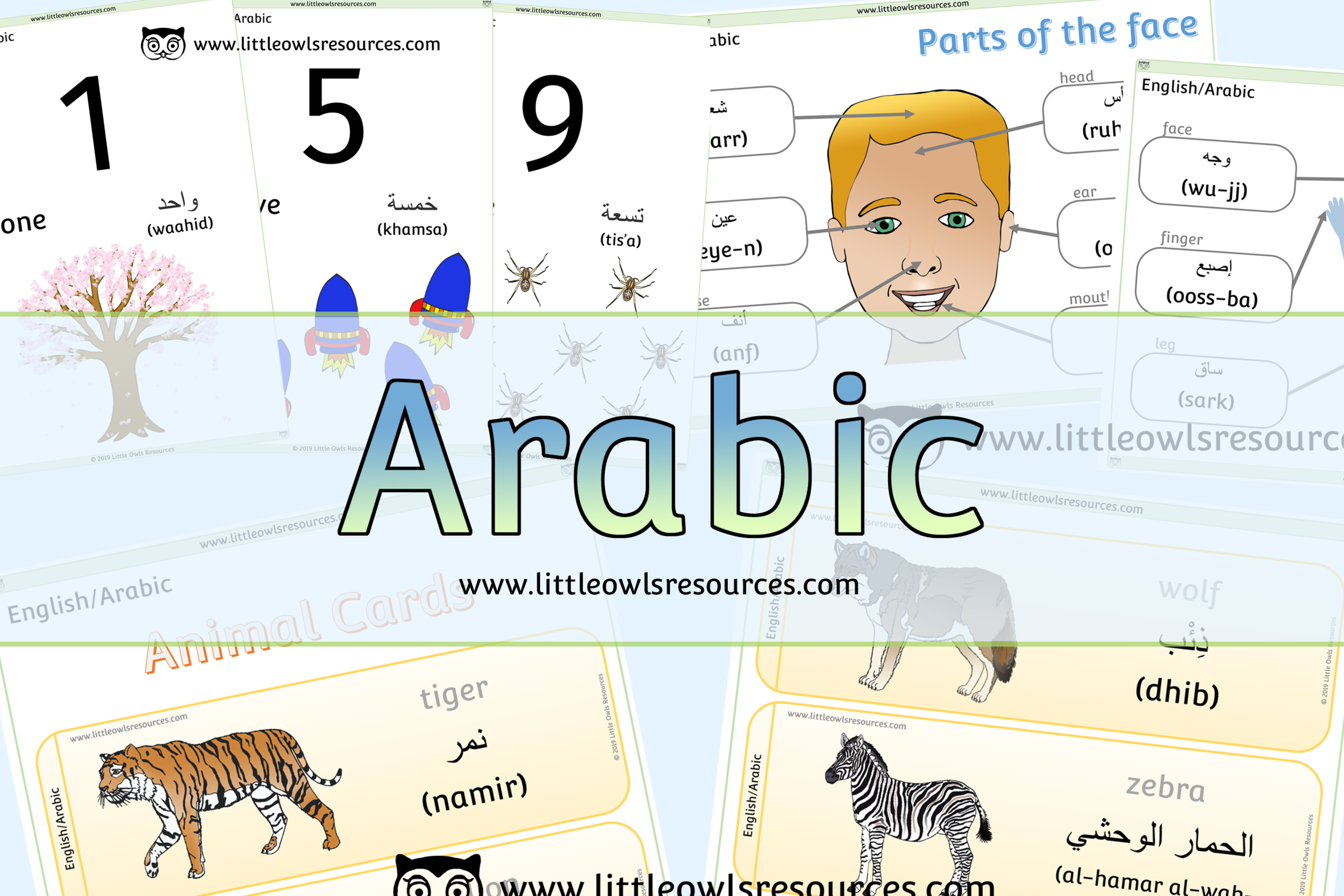 Arabic/English Dual Language Resources