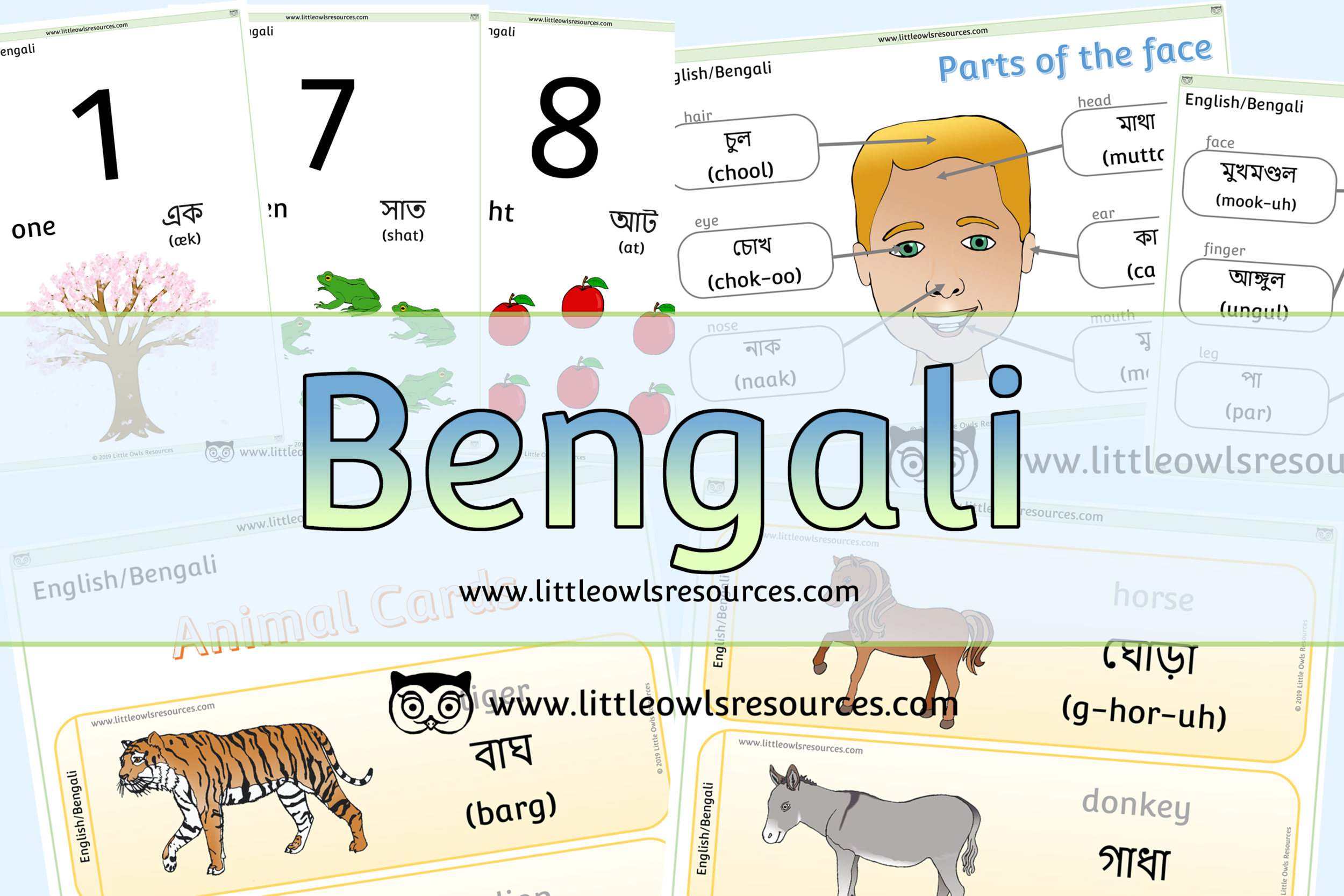 Bengali/English Dual Language Resources