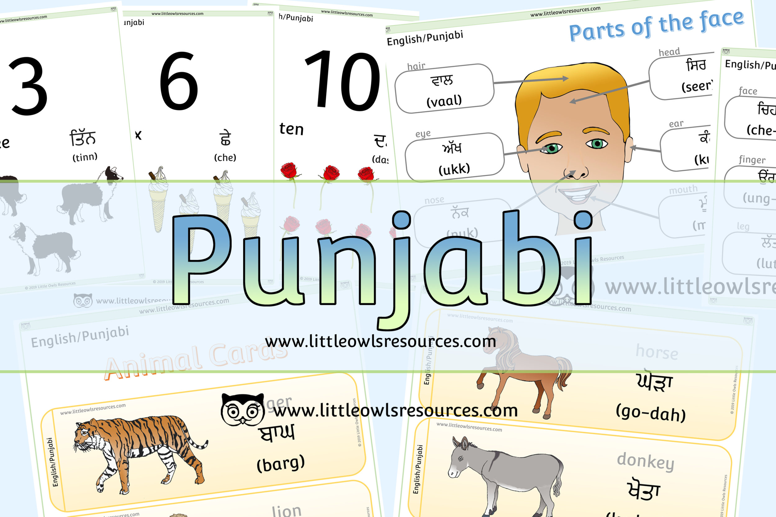 Punjabi/English Dual Language Resources