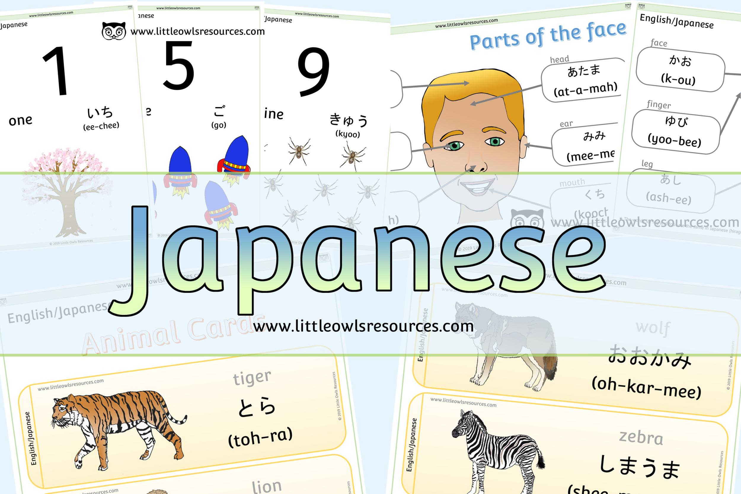 Japanese/English Dual Language Resources