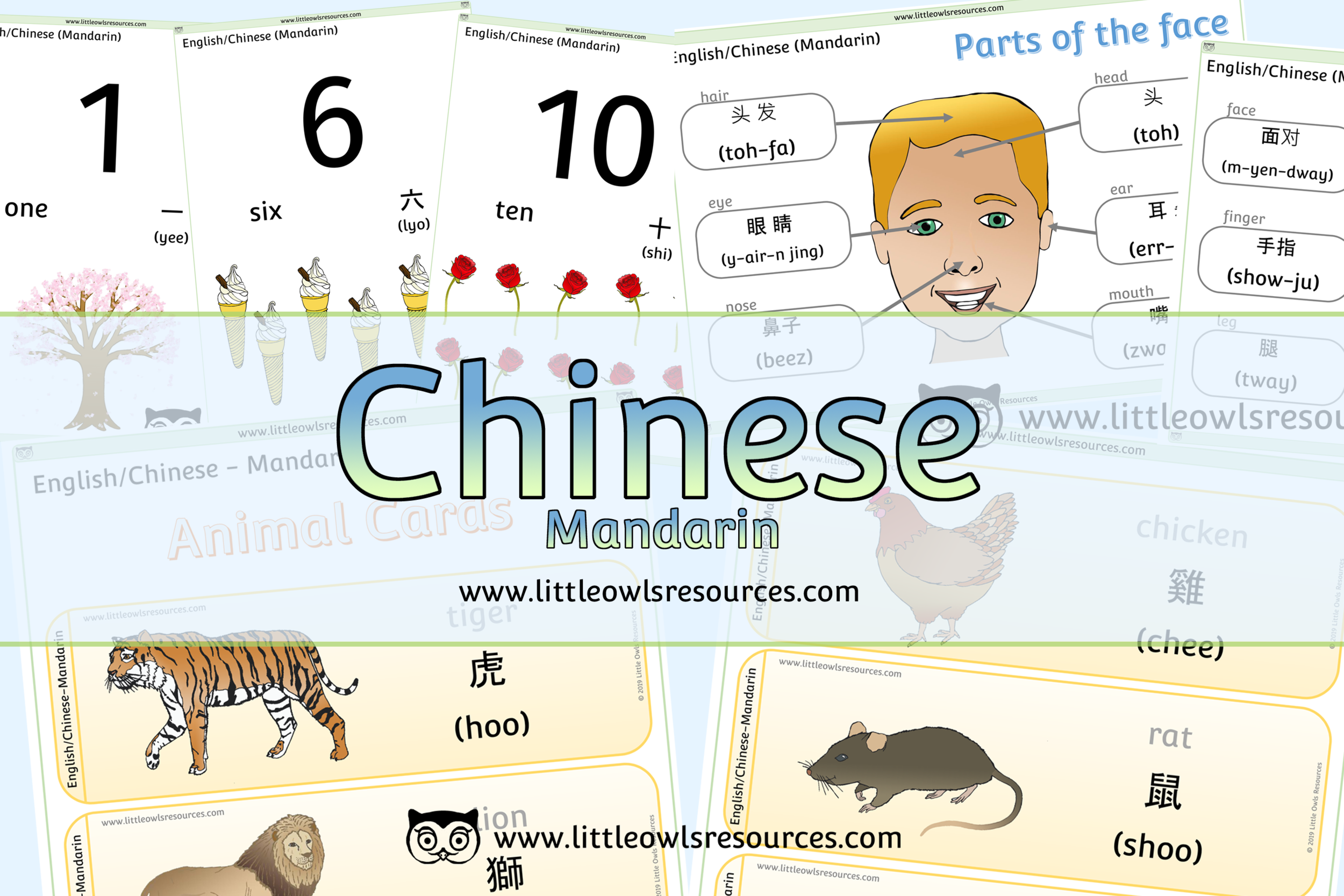 Chinese Mandarin/English Dual Language Resources