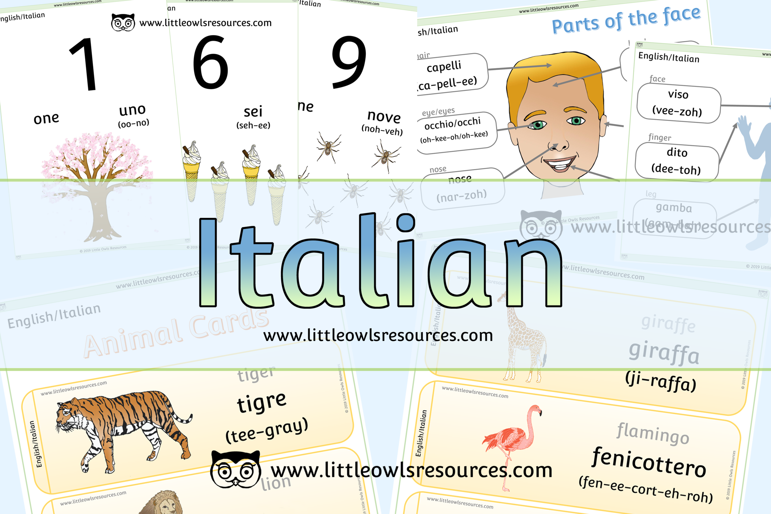 Free Italian English Dual Language Printable Early Years Eyfs Preschool Resources Display Activities Little Owls Resources Free