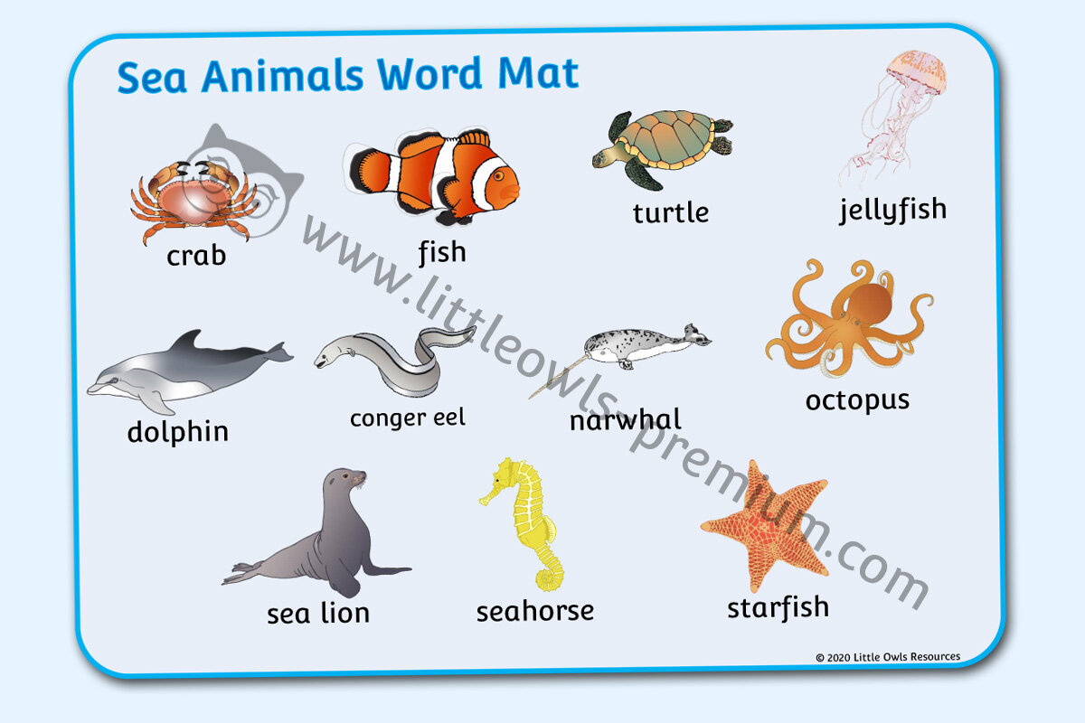 Under the Sea EYFS//KS1//Early Learning//Childminders Teaching Resource Poster
