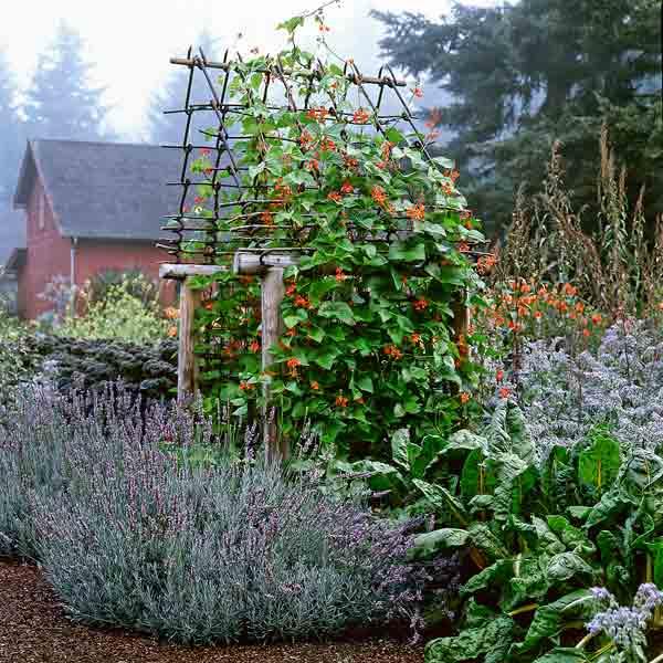 via Better Homes & Gardens