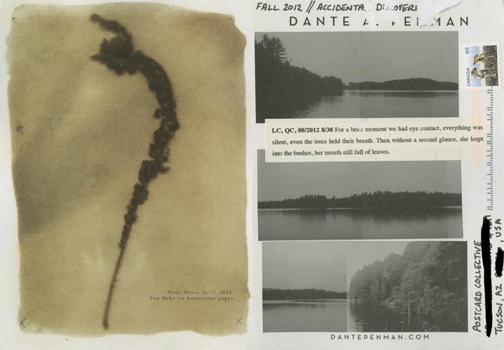 Dante Penman