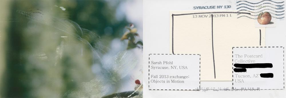 Sarah Pfohl