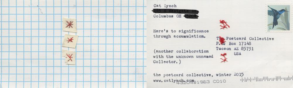 Cat Lynch