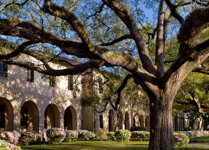 LSU Guidelines - As an appendix to the larger Master Plan, the Design Guidelines and exist to guide physical campus development on campus over the next decade and beyond. This flexible and practical framework consists of a series of lenses and existing character studies that lead to seven design principles to guide future development. These principles include: time and place, linkages, layering, social spaces, human scale, design elements/materials, and sustainability.