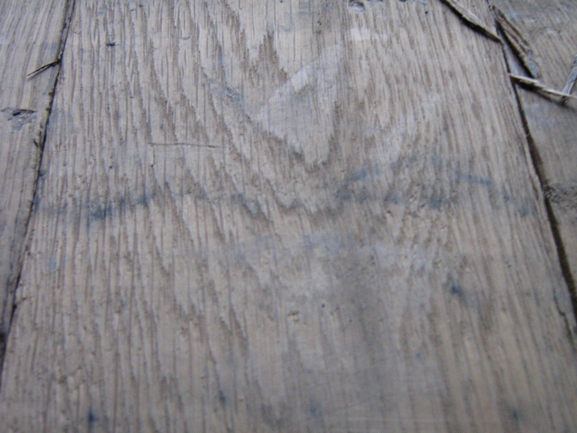 White Oak 2C 004.jpg