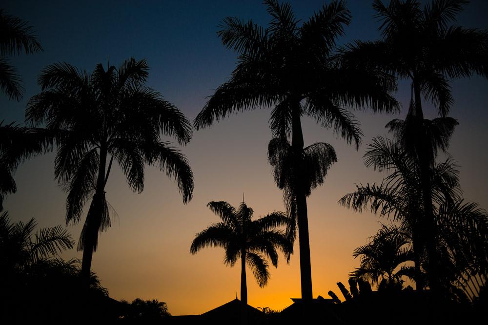 jamaica-web-22.jpg
