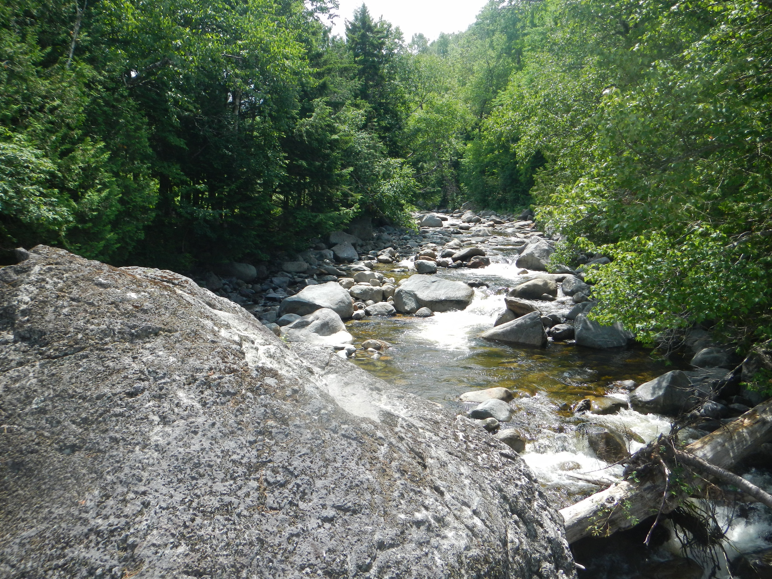 Looking downstream from a wooden bridge on Sugarloaf Mountain, Carrabassett Valley, Maine (Photo: Mimi Stadler 2014)