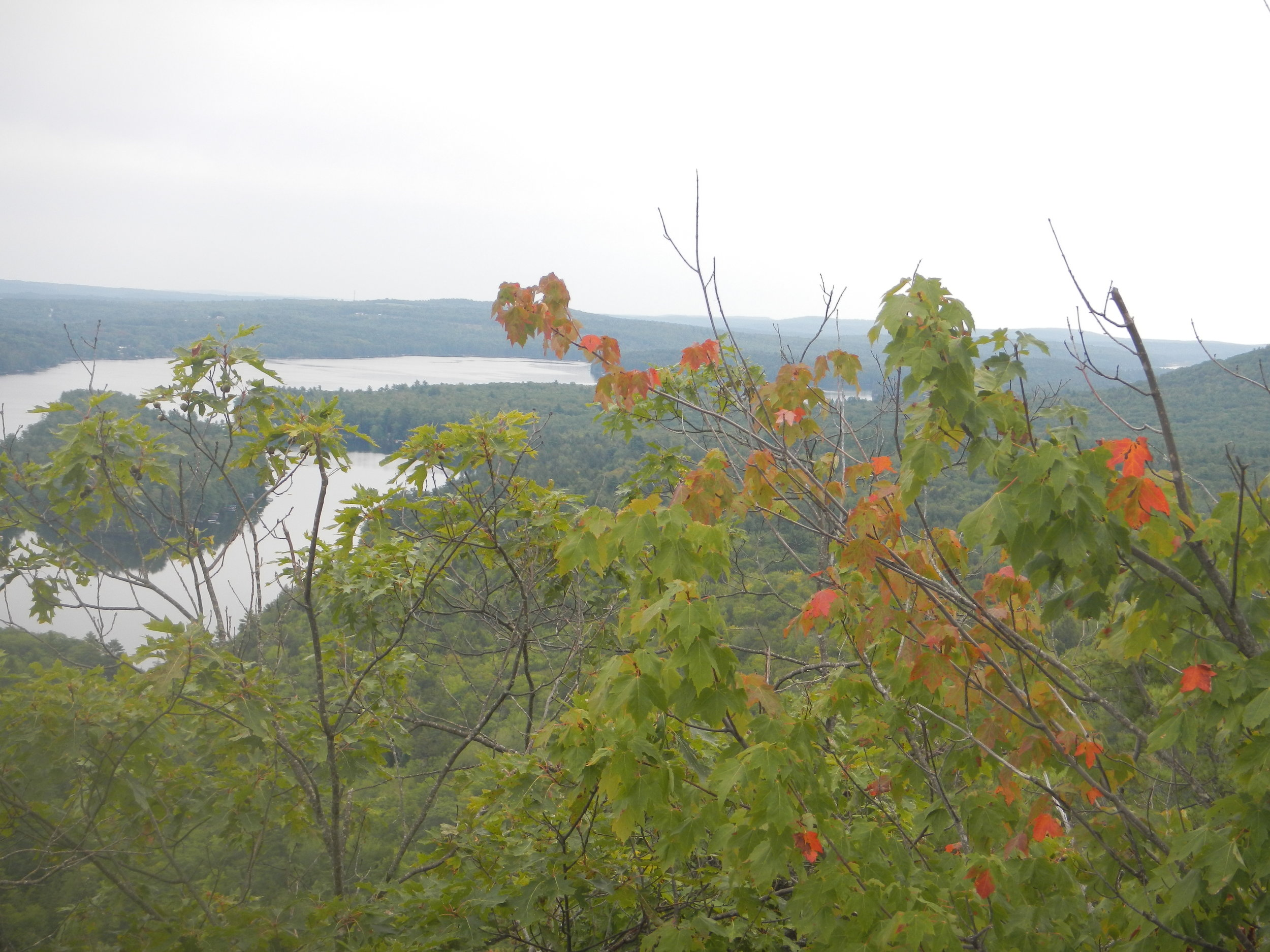 View of Watson Pond from Sanders Loop trail in the Kennebec Highlands, Maine. A small, pleasant hike up and back down, with a sweet payoff view. In early July there are blueberries. Now a few leaves are just beginning to change from summer green to autumn red.