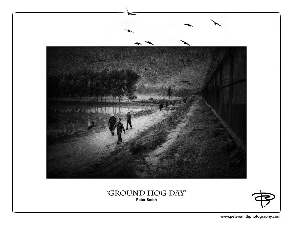 Number 25, 2014, 'Ground Hog Day'