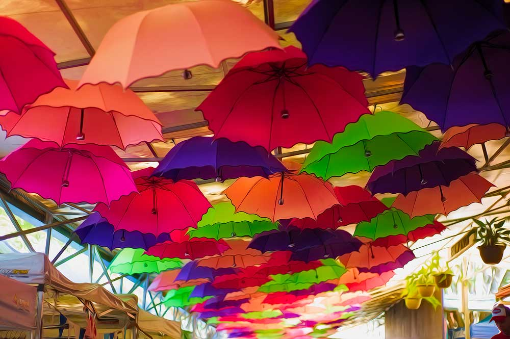 Umbrella's - Eumundi Markets