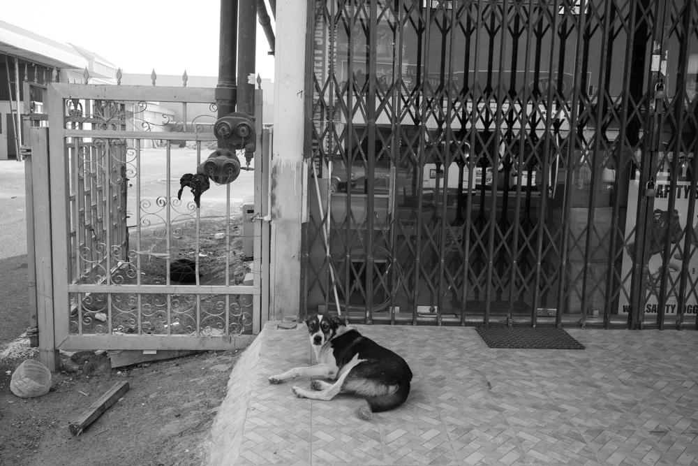 Street Photography-67913.jpg