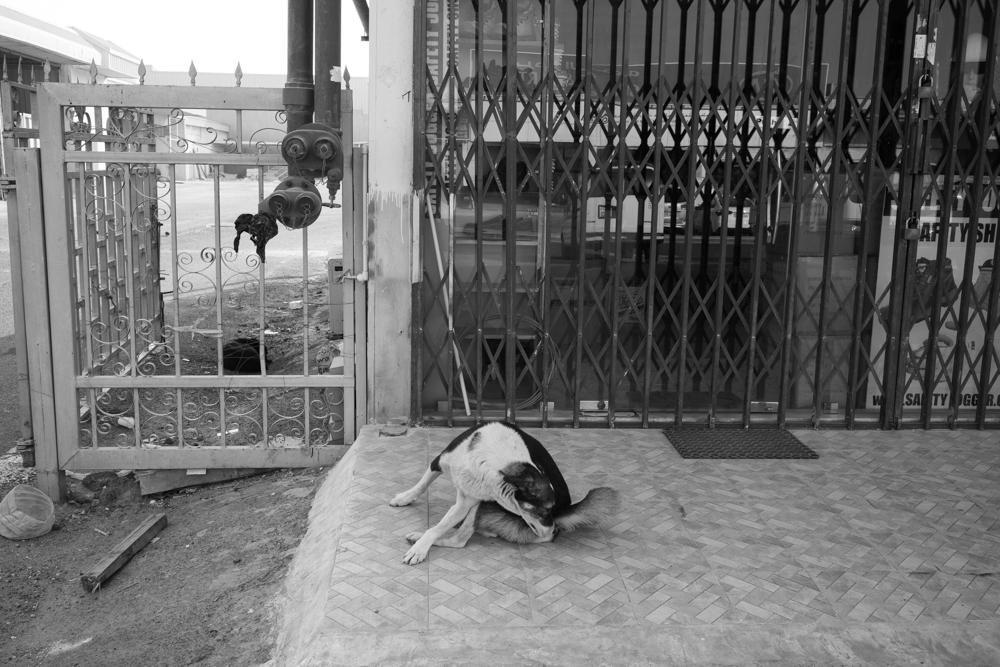 Street Photography-67916.jpg