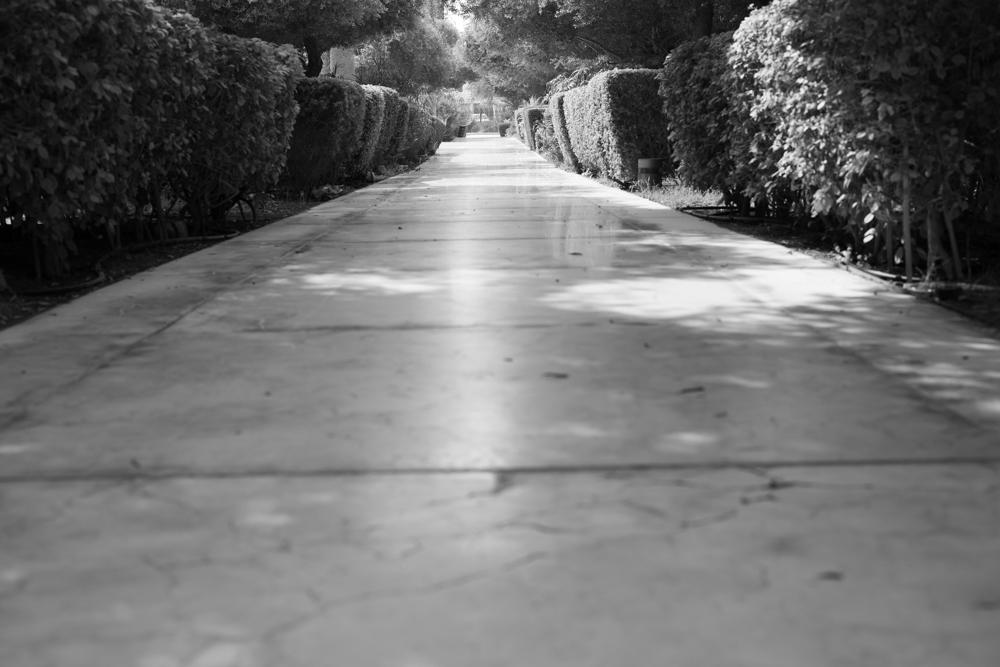 Street Photography-68240.jpg