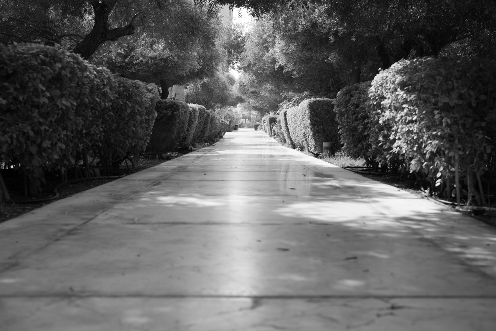 Street Photography-68241.jpg