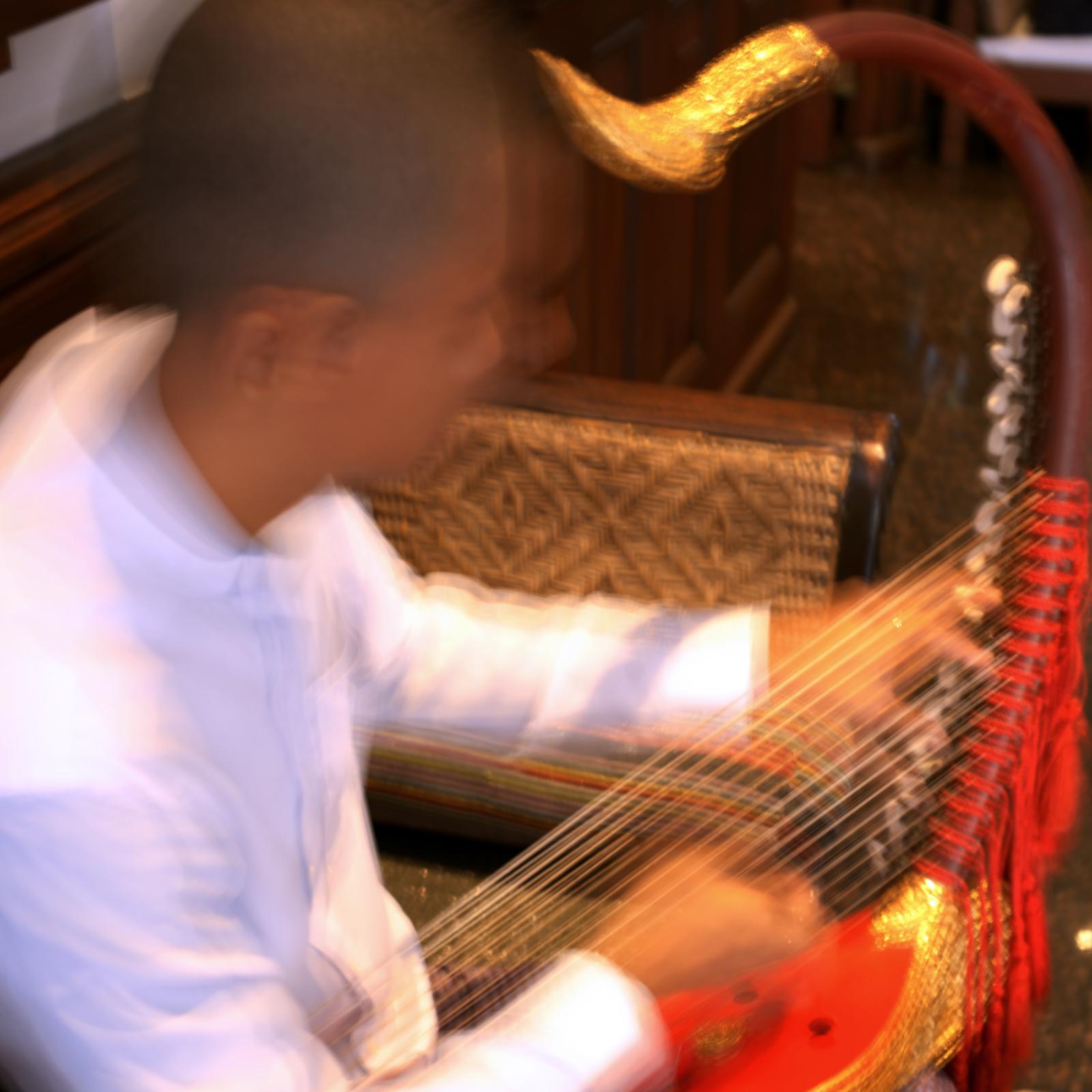harp 1.jpeg
