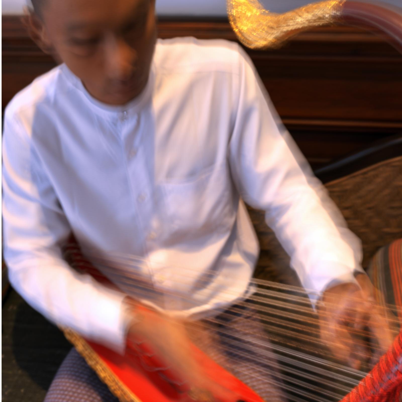 harp 2.jpeg