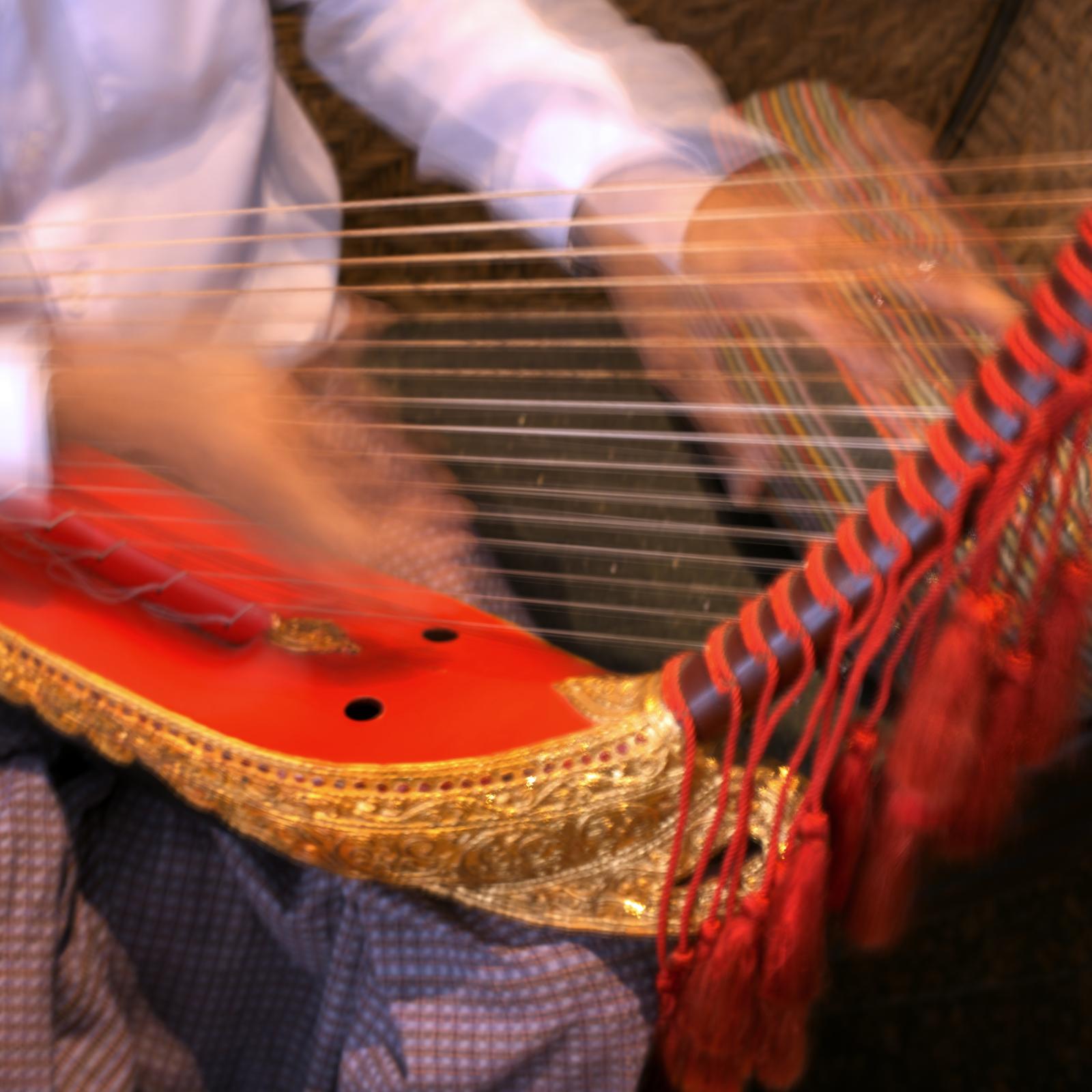 harp 3.jpeg