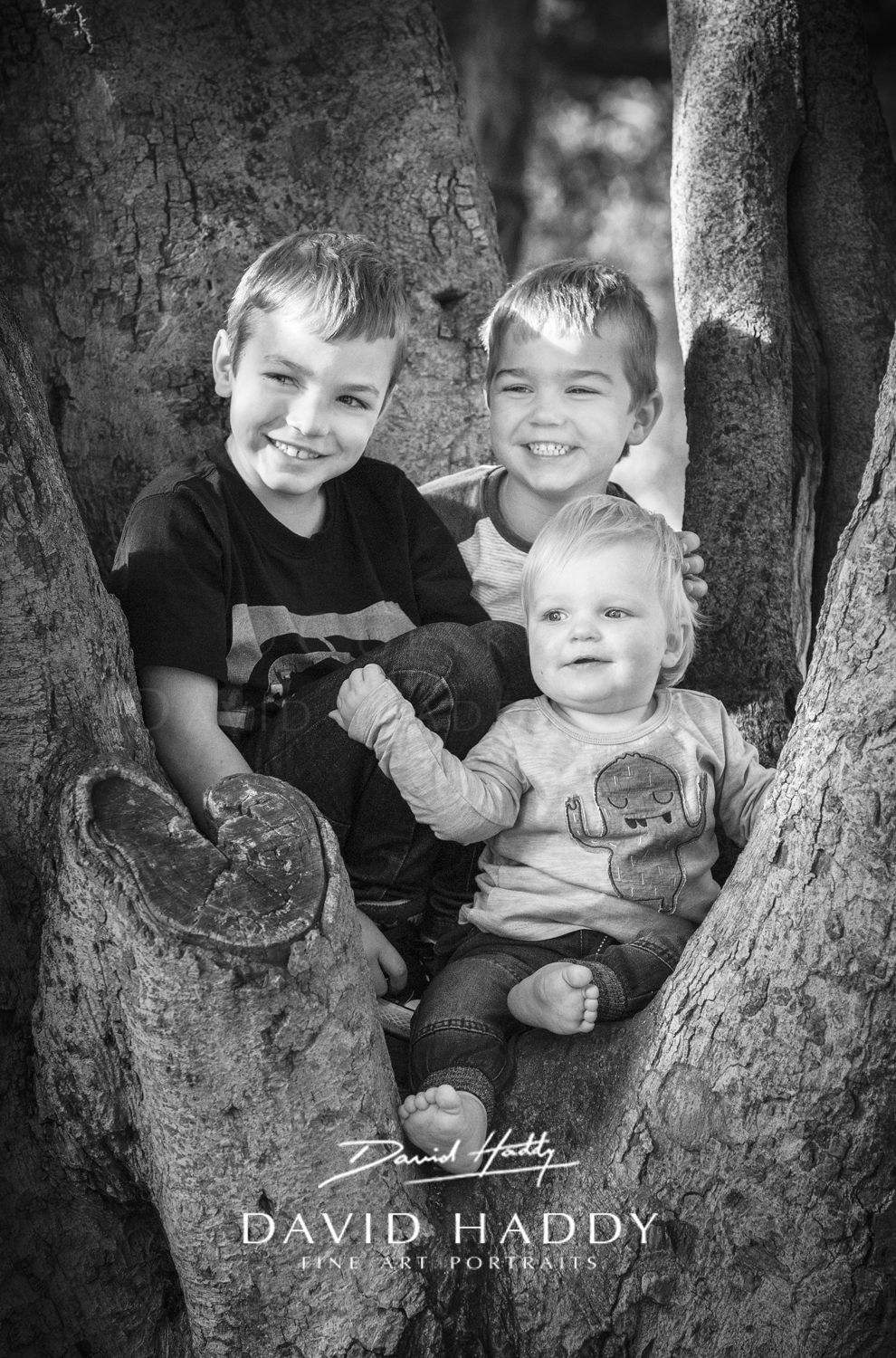 Trees are for climbing - by Adelaide childrens photographer David Haddy